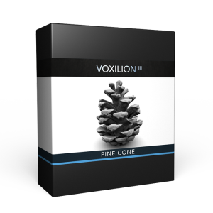 Pine_Cone_3D_Scan_Pack